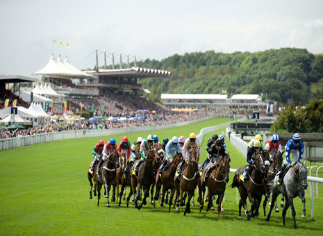 gloriousgoodwood5